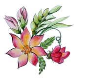 Διακοσμητική ανθοδέσμη watercolor των λουλουδιών και των χορταριών απεικόνιση αποθεμάτων