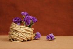 Διακοσμητική σύνθεση του σπάγγου και των λουλουδιών σε ένα καφετί υπόβαθρο Στοκ εικόνα με δικαίωμα ελεύθερης χρήσης