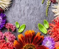 Διακοσμητική σύνθεση των χρωμάτων φθινοπώρου στο σκοτεινό υπόβαθρο πλακών Στοκ φωτογραφία με δικαίωμα ελεύθερης χρήσης