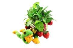 διακοσμητική φράουλα Στοκ εικόνα με δικαίωμα ελεύθερης χρήσης