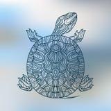 Διακοσμητική χελώνα Στοκ Εικόνες