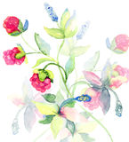 Διακοσμητική floral ανασκόπηση Στοκ Φωτογραφίες