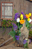 Διακοσμητική floral επίδειξη τουλιπών Στοκ εικόνες με δικαίωμα ελεύθερης χρήσης