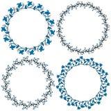 Διακοσμητικοί κύκλοι Στοκ Φωτογραφία