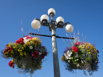 Διακοσμητικοί φωτεινοί σηματοδότες με τη Βρετανική Κολομβία Βικτώριας Καναδάς καλαθιών λουλουδιών Στοκ Εικόνες