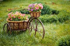 Διακοσμητικός εκλεκτής ποιότητας πρότυπος παλαιός εξοπλισμένος ποδήλατο κήπος λουλουδιών καλαθιών Στοκ Φωτογραφία