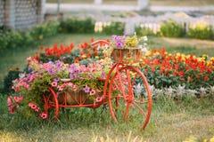 Διακοσμητικός εκλεκτής ποιότητας πρότυπος παλαιός εξοπλισμένος ποδήλατο κήπος λουλουδιών καλαθιών Στοκ Εικόνες