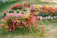Διακοσμητικός εκλεκτής ποιότητας πρότυπος παλαιός εξοπλισμένος ποδήλατο κήπος λουλουδιών καλαθιών φωτογραφία στοκ εικόνες