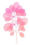 Διακοσμητικός ρόδινος κλάδος Watercolor Στοκ εικόνα με δικαίωμα ελεύθερης χρήσης