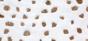 Διακοσμητικός τοίχος που αντιμετωπίζει την πέτρα στοκ φωτογραφίες με δικαίωμα ελεύθερης χρήσης