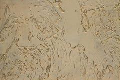 Διακοσμητικός τοίχος. σύσταση στόκων Στοκ Εικόνα