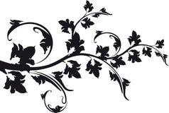 Διακοσμητικός floral κλάδος γραπτός Στοκ εικόνες με δικαίωμα ελεύθερης χρήσης
