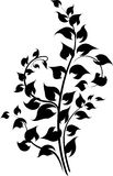 Διακοσμητικός floral κλάδος Στοκ εικόνες με δικαίωμα ελεύθερης χρήσης