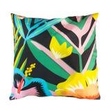 Διακοσμητικός floral ρίχνει το μαξιλάρι Στοκ εικόνα με δικαίωμα ελεύθερης χρήσης