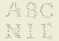 διακοσμητικός floral τύπος χα&r απεικόνιση αποθεμάτων