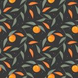 Διακοσμητικό ατελείωτο σχέδιο με tangerines και τα φύλλα Στοκ εικόνες με δικαίωμα ελεύθερης χρήσης