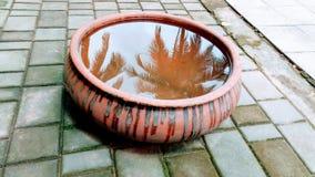Διακοσμητικό δοχείο με το νερό στοκ φωτογραφίες
