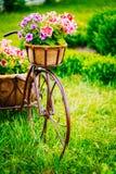 Διακοσμητικό εκλεκτής ποιότητας ρόδινο ποδήλατο με ένα διακοσμητικό καλάθι της ροής Στοκ φωτογραφία με δικαίωμα ελεύθερης χρήσης