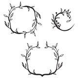 διακοσμητικό λουλούδι  Στοκ εικόνα με δικαίωμα ελεύθερης χρήσης