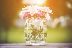 Διακοσμητικό μπουκέτο λουλουδιών των φρέσκων ρόδινων θερινών λουλουδιών Στοκ Εικόνες