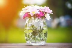 Διακοσμητικό μπουκέτο λουλουδιών των φρέσκων ρόδινων θερινών λουλουδιών Στοκ φωτογραφία με δικαίωμα ελεύθερης χρήσης