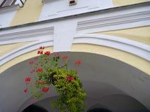 Διακοσμητικό δοχείο λουλουδιών στο arcade Στοκ Εικόνες