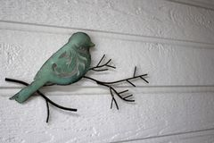 Διακοσμητικό πουλί σε έναν κλάδο Στοκ φωτογραφίες με δικαίωμα ελεύθερης χρήσης