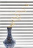 διακοσμητικό σπειροειδές vase κλάδων Στοκ Εικόνες