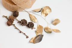Διακοσμητικό στεφάνι Χριστουγέννων του κώνου, φύλλα Στοκ Εικόνες