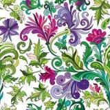 Διακοσμητικό συρμένο χέρι doodle διανυσματικό περιγραμματικό άνευ ραφής σχέδιο μπουκλών φύσης διακοσμητικό ελεύθερη απεικόνιση δικαιώματος
