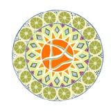 Διακοσμητικό συρμένο χέρι mandala με το διαφορετικό γεωμετρικό στοιχείο απεικόνιση αποθεμάτων