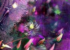 Διακοσμητικό υπόβαθρο με τα clematis εγκαταστάσεων, μυστήρια floral εικόνα, οφθαλμοί στο ιώδες υπόβαθρο, σύσταση της ζωγραφικής,  Στοκ Φωτογραφία