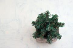 Διακοσμητικό χριστουγεννιάτικο δέντρο σε ένα δοχείο Στοκ φωτογραφίες με δικαίωμα ελεύθερης χρήσης