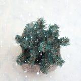 Διακοσμητικό χριστουγεννιάτικο δέντρο σε ένα δοχείο Στοκ Εικόνα