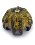 Διακοσμητικό flavovirent χρώμα μια κολοκύθα Στοκ Φωτογραφία