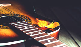 Διακοσμητικό plumelet στις σειρές μιας κιθάρας Στοκ Φωτογραφία