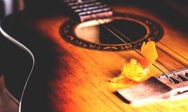 Διακοσμητικό plumelet στις σειρές μιας κιθάρας Στοκ Εικόνα