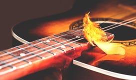 Διακοσμητικό plumelet στις σειρές μιας κιθάρας Στοκ εικόνες με δικαίωμα ελεύθερης χρήσης