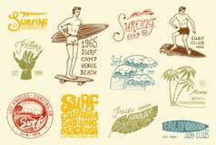 Διακριτικό και κύμα κυματωγών, φοίνικας και ωκεανός τροπικοί κύκλοι και Καλιφόρνια άτομο στην ιστιοσανίδα, καλοκαίρι στην παραλία ελεύθερη απεικόνιση δικαιώματος