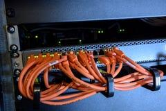 Διακόπτης Διαδικτύου με τα καλώδια ethernet Στοκ φωτογραφίες με δικαίωμα ελεύθερης χρήσης