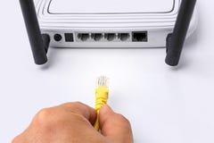 Διακόπτης δικτύων του τοπικού LAN με τα καλώδια ethernet που συνδέουν στο λευκό Στοκ Φωτογραφίες