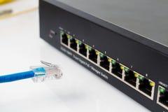 Διακόπτης δικτύων του τοπικού LAN με τα καλώδια ethernet που συνδέουν Στοκ εικόνες με δικαίωμα ελεύθερης χρήσης