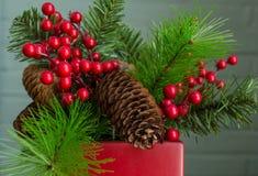 Διακόσμηση αειθαλών και Χριστουγέννων μούρων, που κεντροθετείται κοντά Στοκ Φωτογραφίες