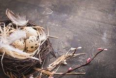 Διακόσμηση αυγών Πάσχας Στοκ Εικόνα