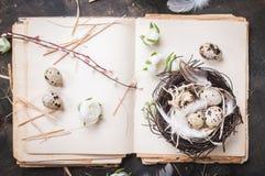 Διακόσμηση αυγών Πάσχας Στοκ Φωτογραφία