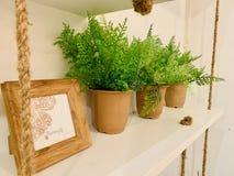 Διακόσμηση, εκλεκτής ποιότητας, ξύλινη, σχοινί, δοχείο εγκαταστάσεων, εικόνα στοκ φωτογραφίες με δικαίωμα ελεύθερης χρήσης