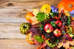 Διακόσμηση ημέρας των ευχαριστιών με την κολοκύθα, μήλα, πράσινα δρύινα φύλλα Στοκ φωτογραφίες με δικαίωμα ελεύθερης χρήσης