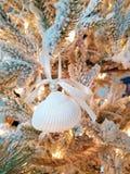 Διακόσμηση θαλασσινών κοχυλιών στο δέντρο διακοπών στοκ εικόνα με δικαίωμα ελεύθερης χρήσης