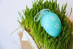 Διακόσμηση διακοπών Πάσχας με το αυγό και τη χλόη στοκ φωτογραφίες