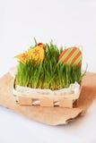 Διακόσμηση διακοπών Πάσχας με το κοτόπουλο, το αυγό και τη χλόη Στοκ Εικόνες
